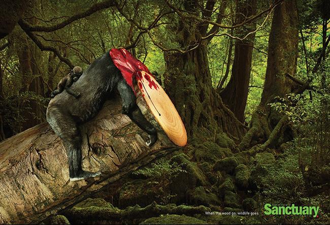 Anúncio publicitário sobre o desmatamento